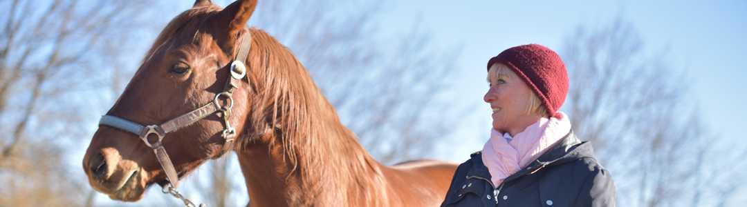Pferdegestütztes Coaching für Frauen